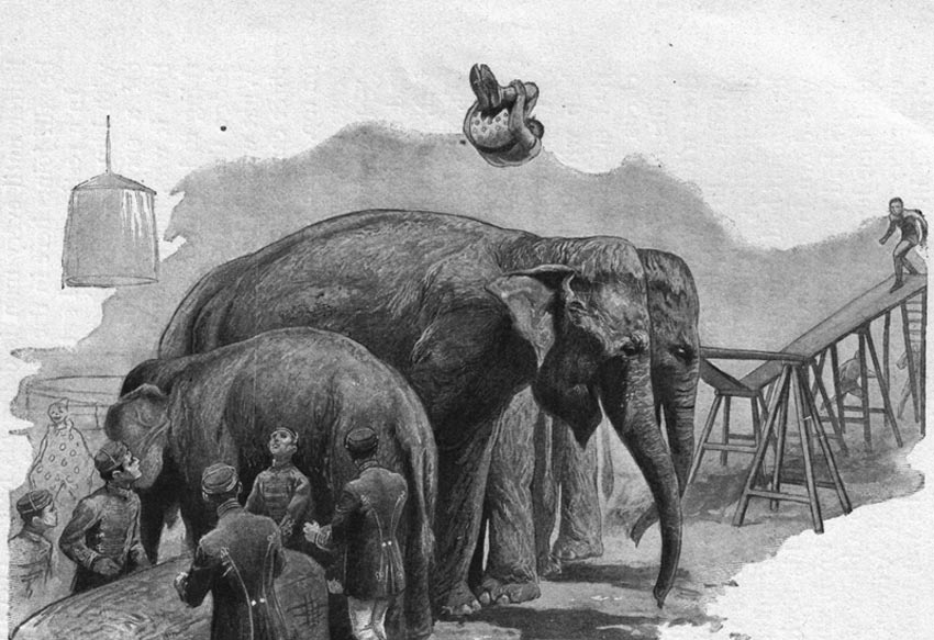 vaulting over elephants