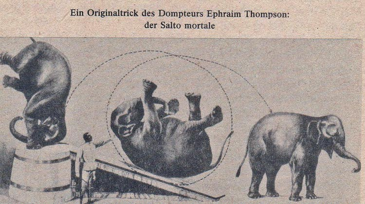 ephraim thompson elephant trainer